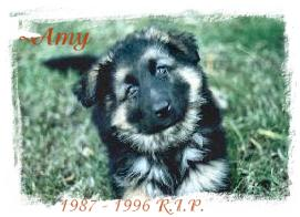 ~AMY OWNERS PENNY AND JOHN. RIP AMY